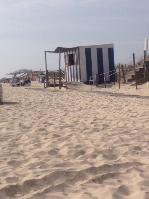 Algarve Praia de Barril (3)