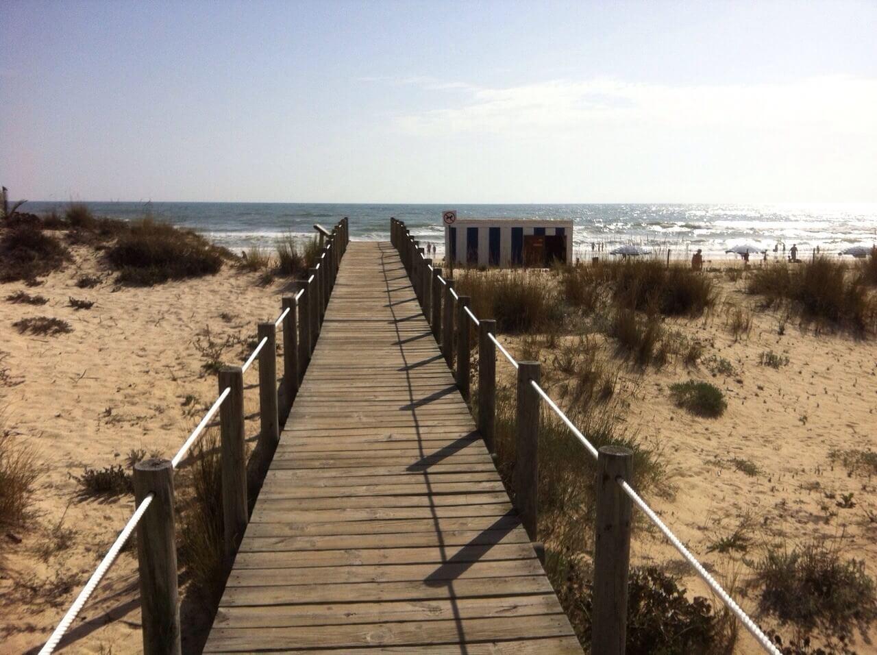 Algarve Praia de Barril (5)