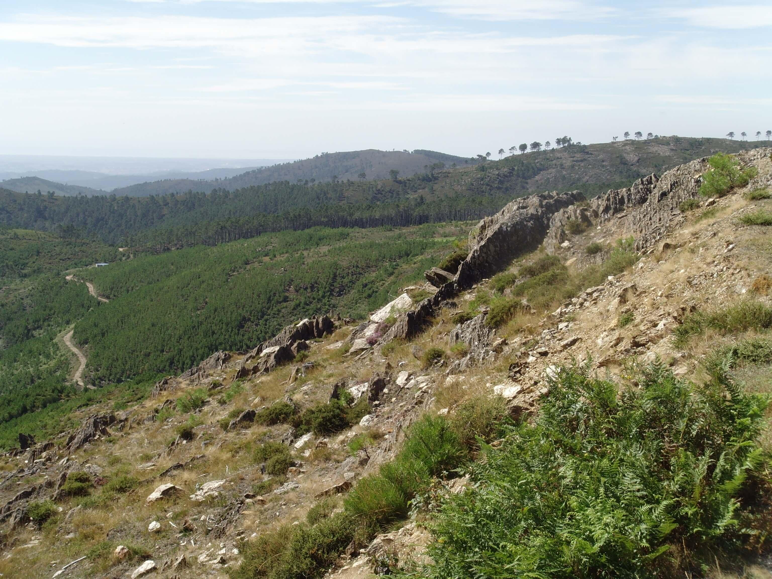 Cepelos - Vale de Cambra (12)