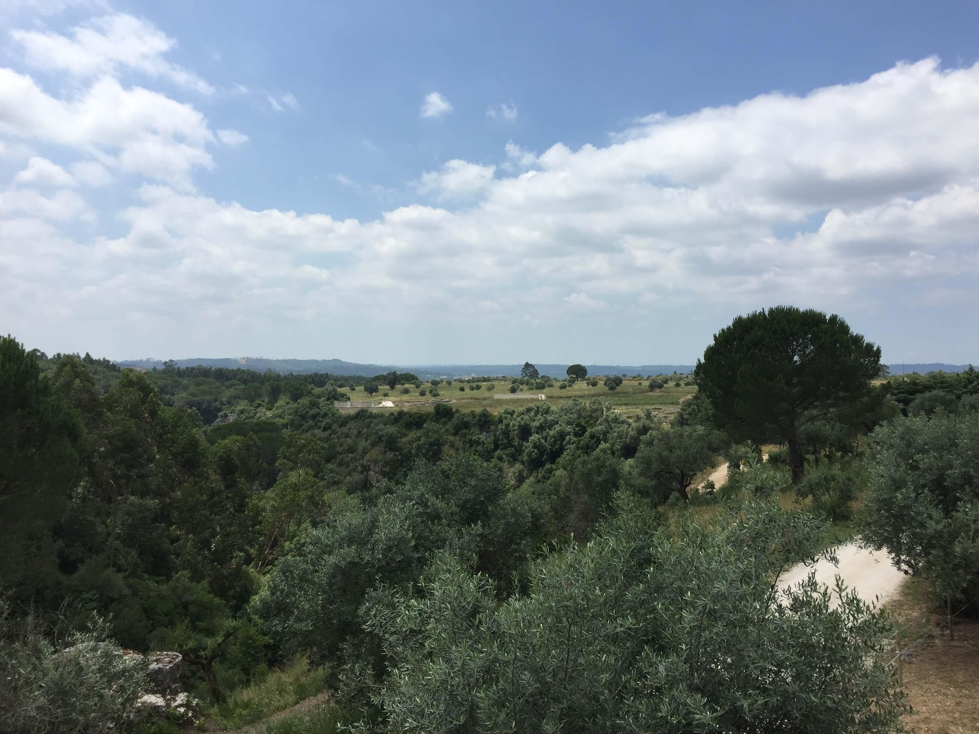 Rondreizen PT Conimbriga (3)